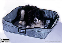 Retriever [Flat Coated]  :Bed - also fits Dog Bag MEDIUM - no. ERDBM-BED