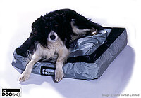 Retriever [Golden]  :Deep Mattress - also fits Dog Bag MEDIUM - no. ERDBM-DM