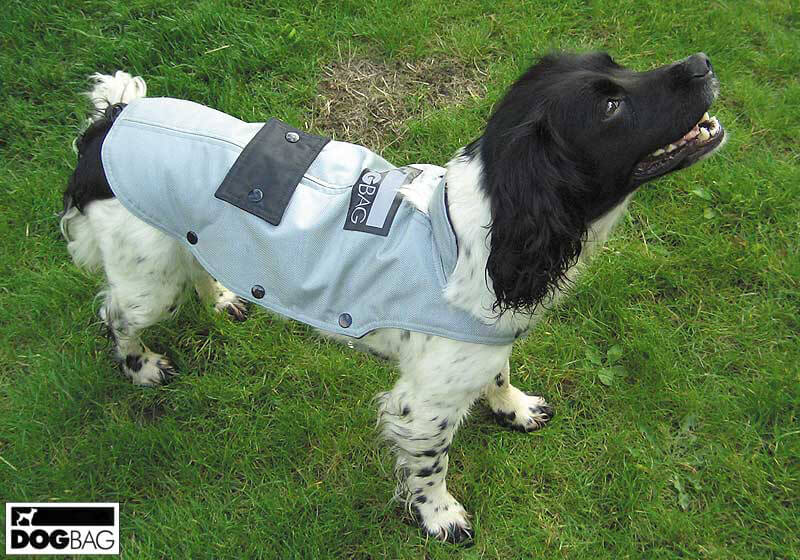Dog Jackets by Dog Bag