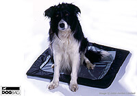Retriever [Flat Coated]  :Mat - also fits Dog Bag MEDIUM - no. ERDBM-MAT