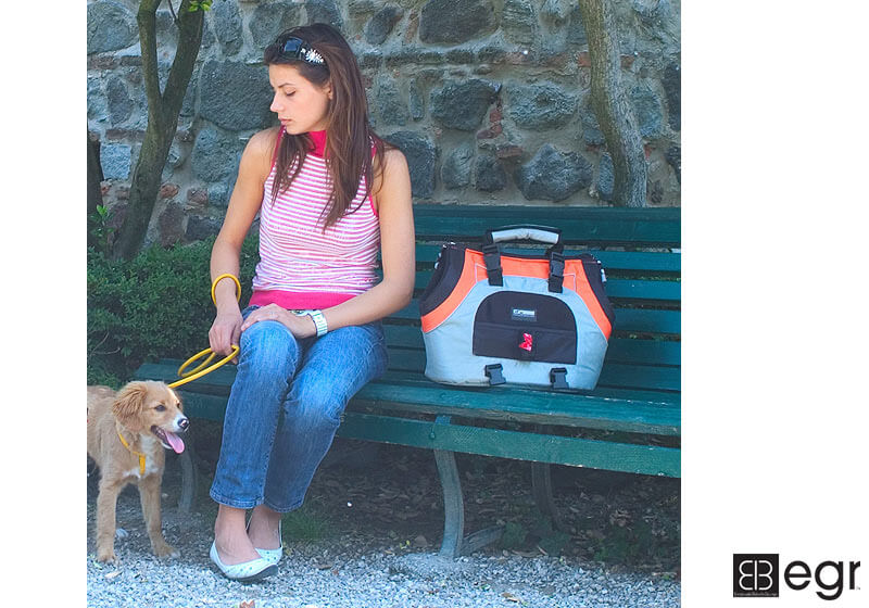 PetEgo EB USB Universal Sports Bag Plus small pet carrier, orange and silver - no. EBUSBPLUS