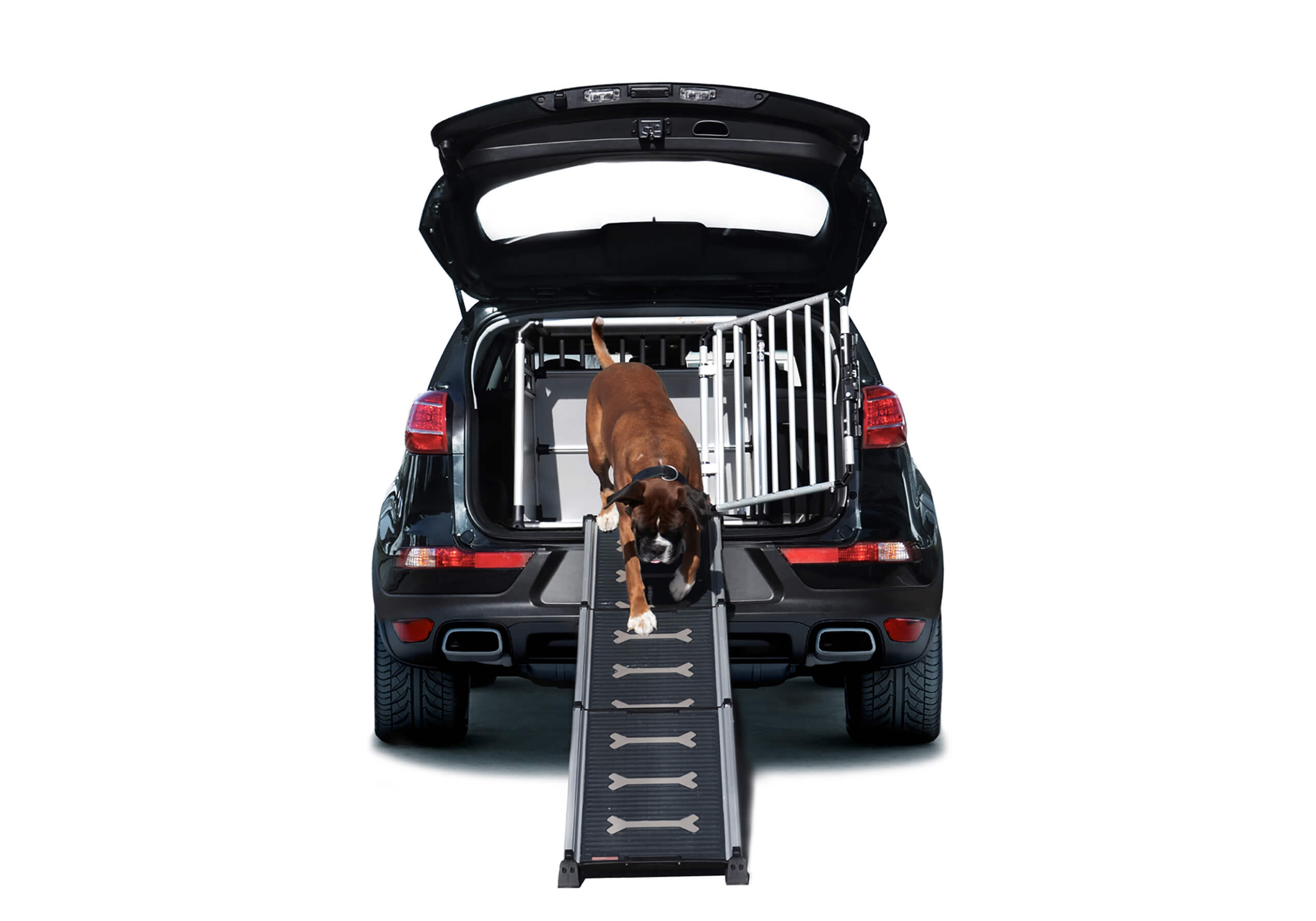4pets-ProLine-Easy-Steps-telescopic-dog-access-ramp