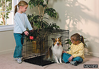 ":Midwest 30"" folding dog cage, double door, black, no. MD1630DD"