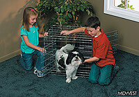 ":Midwest 30"" 'Ultima' folding dog cage, triple door, zinc, no. MD1630UL"