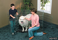":Midwest 48"" 'Ultima' folding dog cage, triple door, zinc, no. MD1648UL"