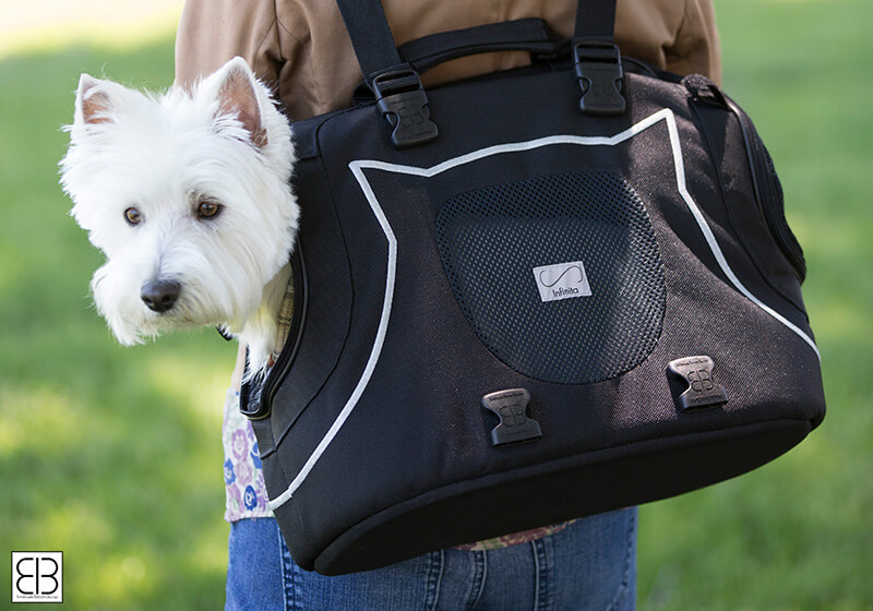 PetEgo EB Infinita small pet carrier, black and silver, EBINFINITA-BL