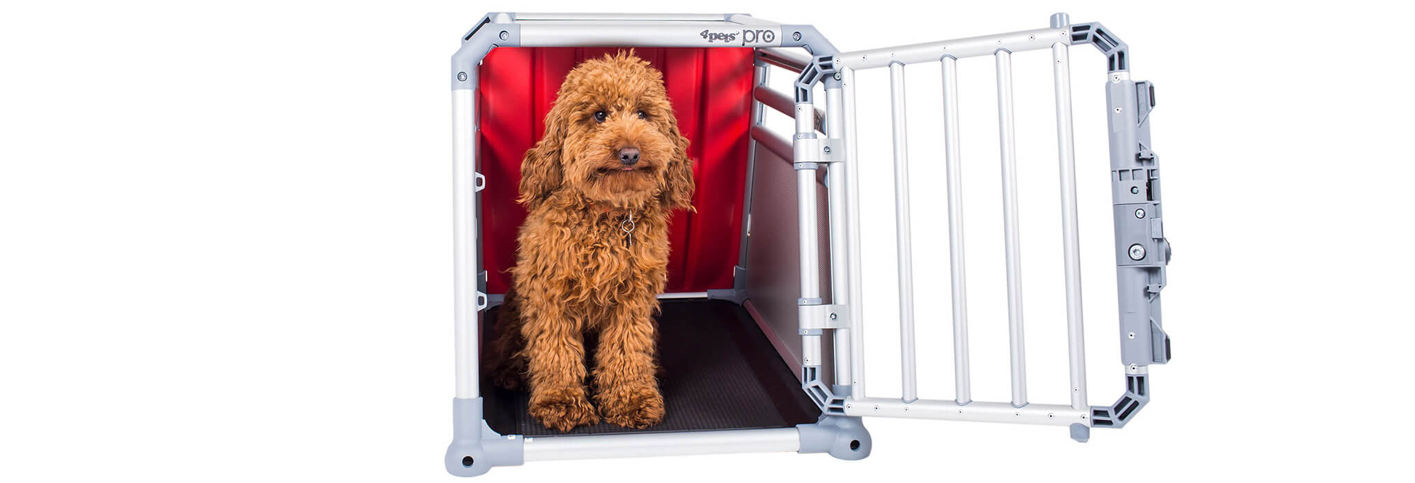 4pets PRO Dog Cage with Cockerpoo- TÜV approved