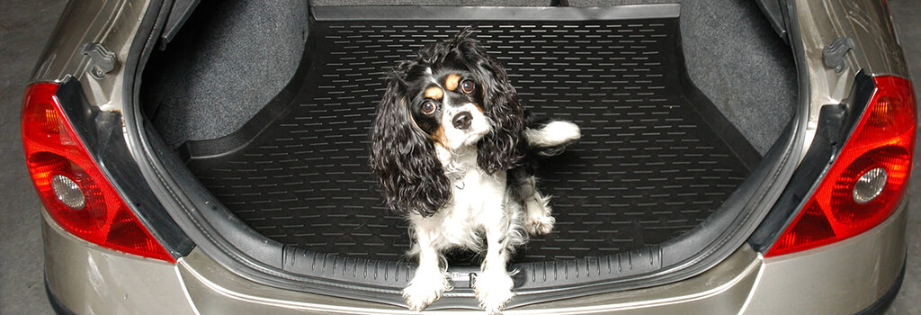 Autoform boot liner with a dog