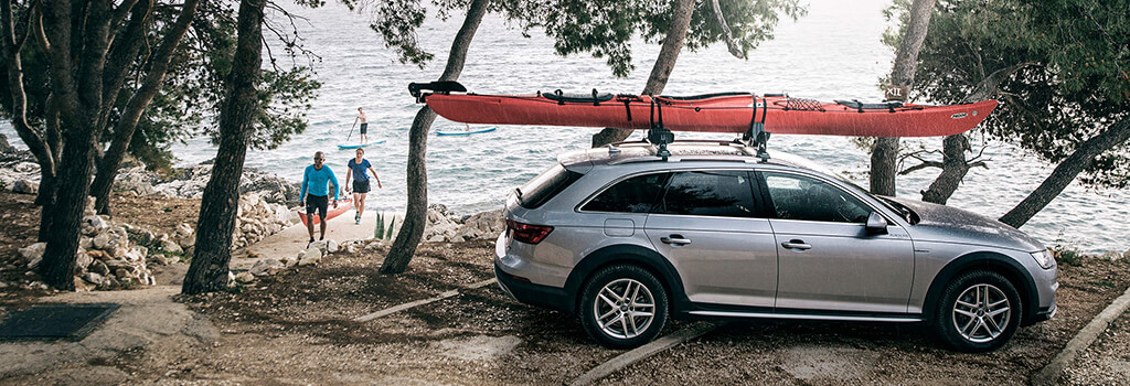 Thule DockGrip watersports carrier