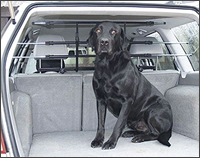 BICE WalkyGuard 'universal dog guard'  at The Roof Box Company
