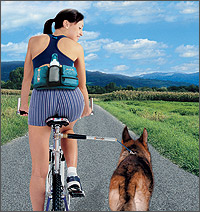 WalkyDog: a bicycle dog leash that attaches to a bike's frame!
