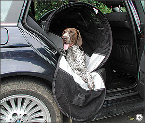 Travel With Pets Pet Transport Systems The Roof Box Company