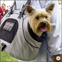 The Roof Box Company: USB - small pet/dog carrier