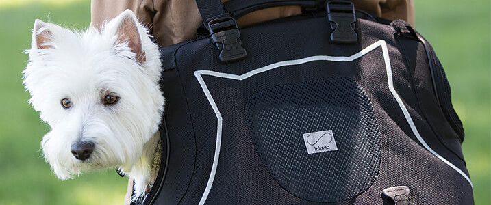 8e6dab4569 Small pet carriers | Carry your pet in style