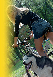 WalkyDog� - Finally: a bicycle dog leash that attaches to a bike's frame!